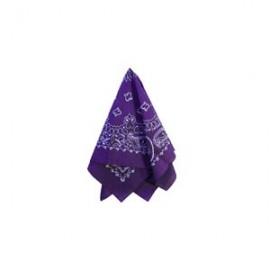 Hanky Purple