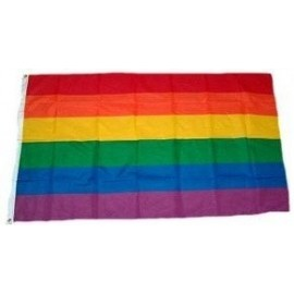 Rainbow Flag 40,5 x 61 cm. Bandiera Gay Pride Rainbow Arcobaleno