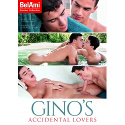Gino´s Accidental Lovers