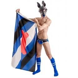 """Puppy Pride Flag bandiera orgoglio di """"cucciolo"""" in nylon 90 x 150 cm."""