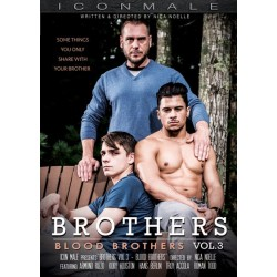 Brothers 3 Blood Brothers